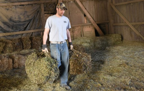 Facilitating Return to Work for Injured and Ill Animal Agriculture Workers