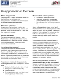 Campylobacter on the Farm