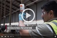 Preventing Needlestick Injuries - Proper Use on Dairy Farms Image