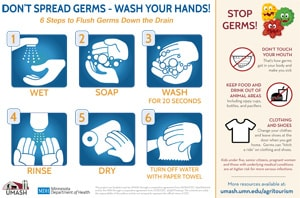 6 Steps to Handwashing Image