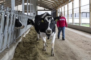 Farm Safety Check: Livestock Facilities & Handling Safety