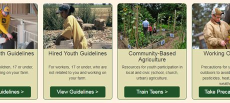 SPOTLIGHT: Agricultural Youth Work Guidelines