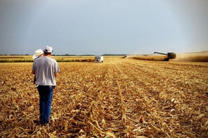 SPOTLIGHT: Workplace Safety Consultation – Free Assistance for MN Farms