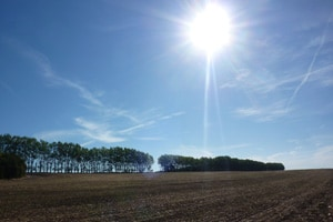 Farm Safety Check: Sun Safety