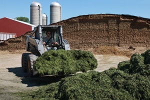 Farm Safety Check: Silage Storage