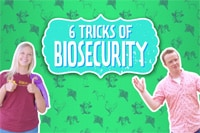 6 Tips for Biosecurity - A Guide for Youth Livestock Exhibitors Image