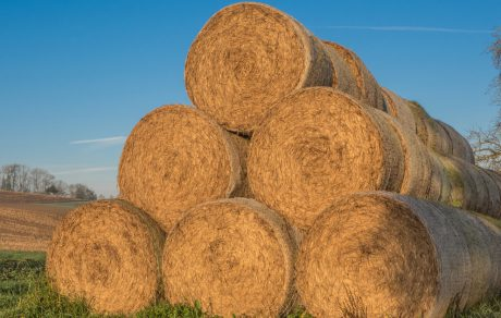 Farm Safety Check: Hay and Silage Harvest