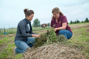 On the WAGN: 2020 Women in Ag Network Conference
